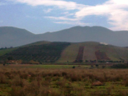 Triffa Berkane تريفة بركان