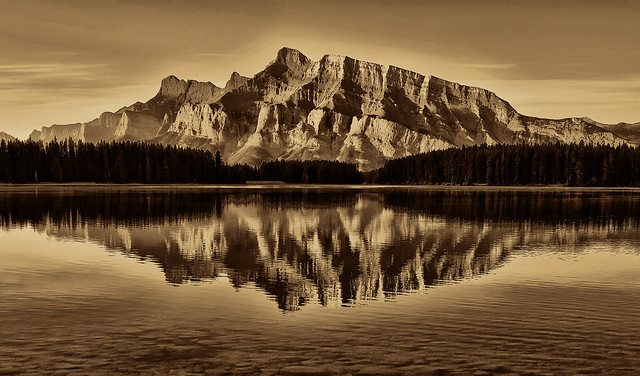 Reflected Rundle