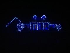 Kentucky Blue Lights