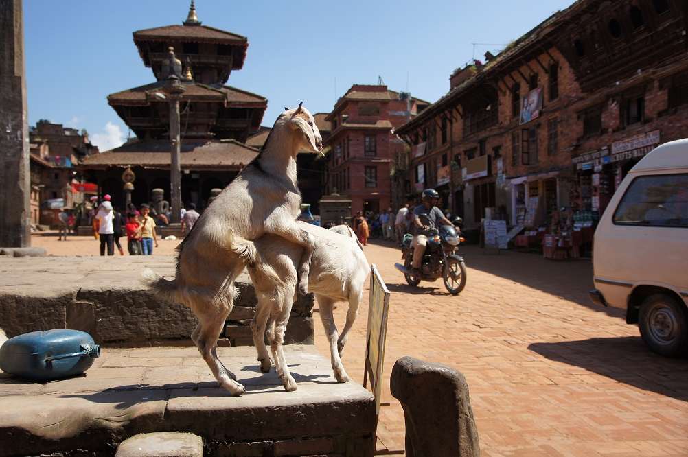 1007_Nepal_123