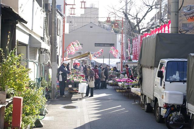 fresh market outside of osu cannon