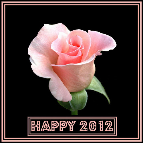 ★★★ VERY ★★★ HAPPY ★★★ 2012 ★★★