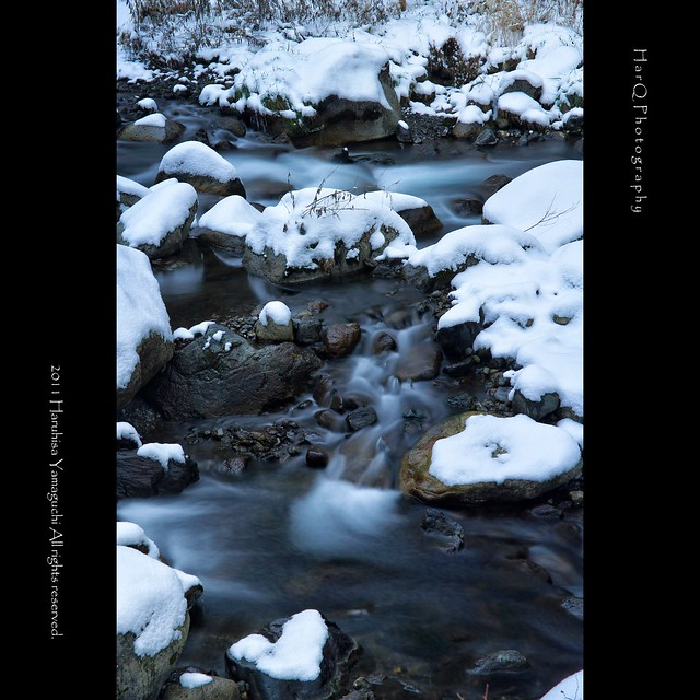 Winter stream *