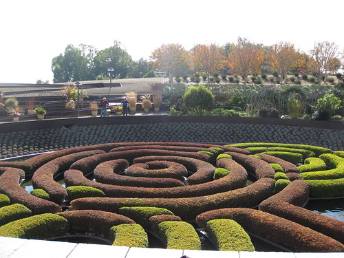 Getty Maze Hedge