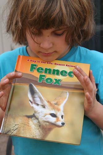 Fennec Fox Report