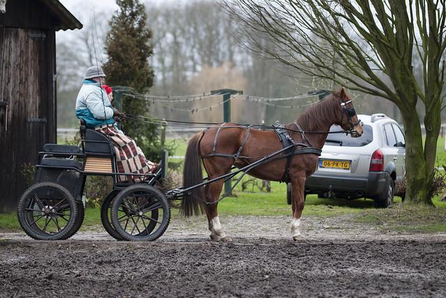 2012-01-08 Winterrit Menvereniging Oud Gerij
