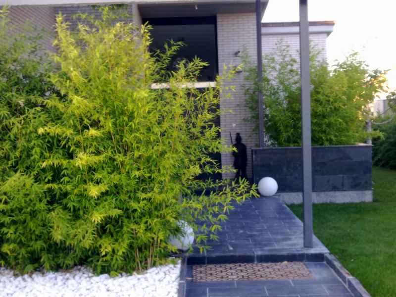 Jardines modernos con bambu interesting jardin seco bamb - Diseno jardines modernos ...