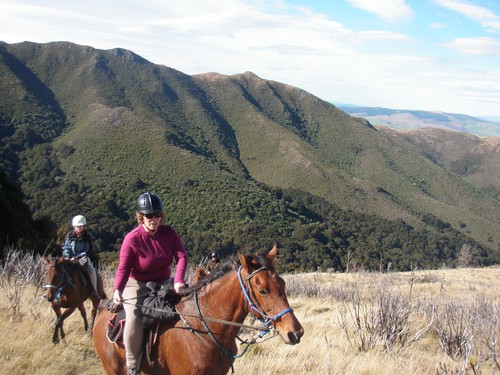 horse riding holidays in new zealand