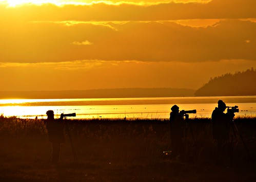 01-10-12 Shooting at Sunset by roswellsgirl