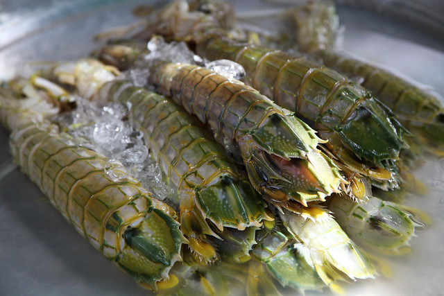 Fresh mantis shrimp at a market in Bangkok, Thailand.