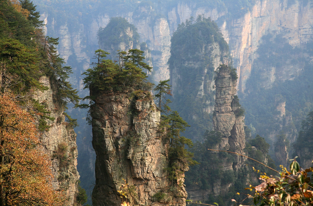 秋を感じる武陵源の石柱