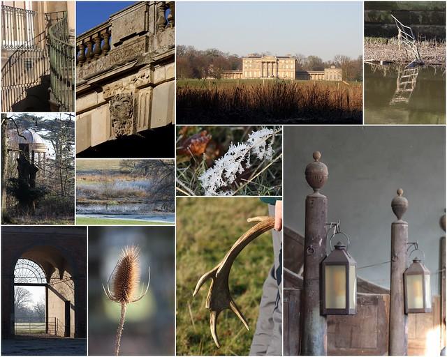 Frosty Attingham Park, Shropshire