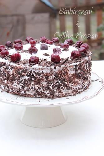 karaorman pastası (6)