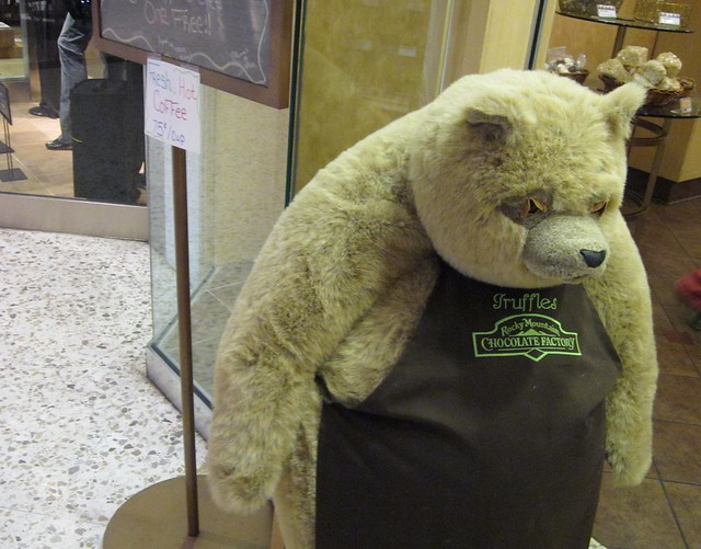 Rocky Mountain Chocolate Factory Bear