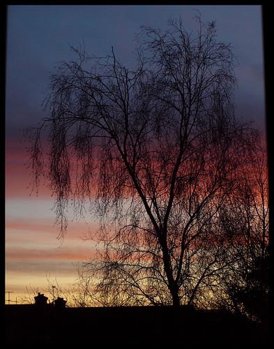 Sunrise 17 January, version 1