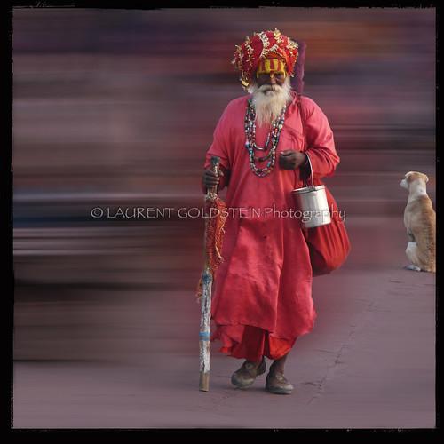 red people dog india man mystery square colours faith religion culture atmosphere soul devotion varanasi turban spiritual shiva hindu dharma hinduism kashi ganga sadhu ganges ghats benares benaras uttarpradesh भारत indiasong