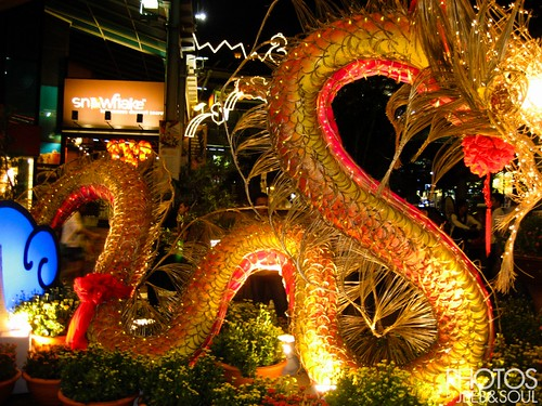 CNY Dragon @ Sg Wang