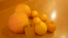 clementine, citrus, orange, lemon, yellow, meyer lemon, produce, fruit, food, still life photography, tangelo, still life, tangerine, mandarin orange,