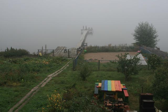 orchard fog table