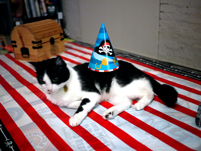 Kitty's pirate party