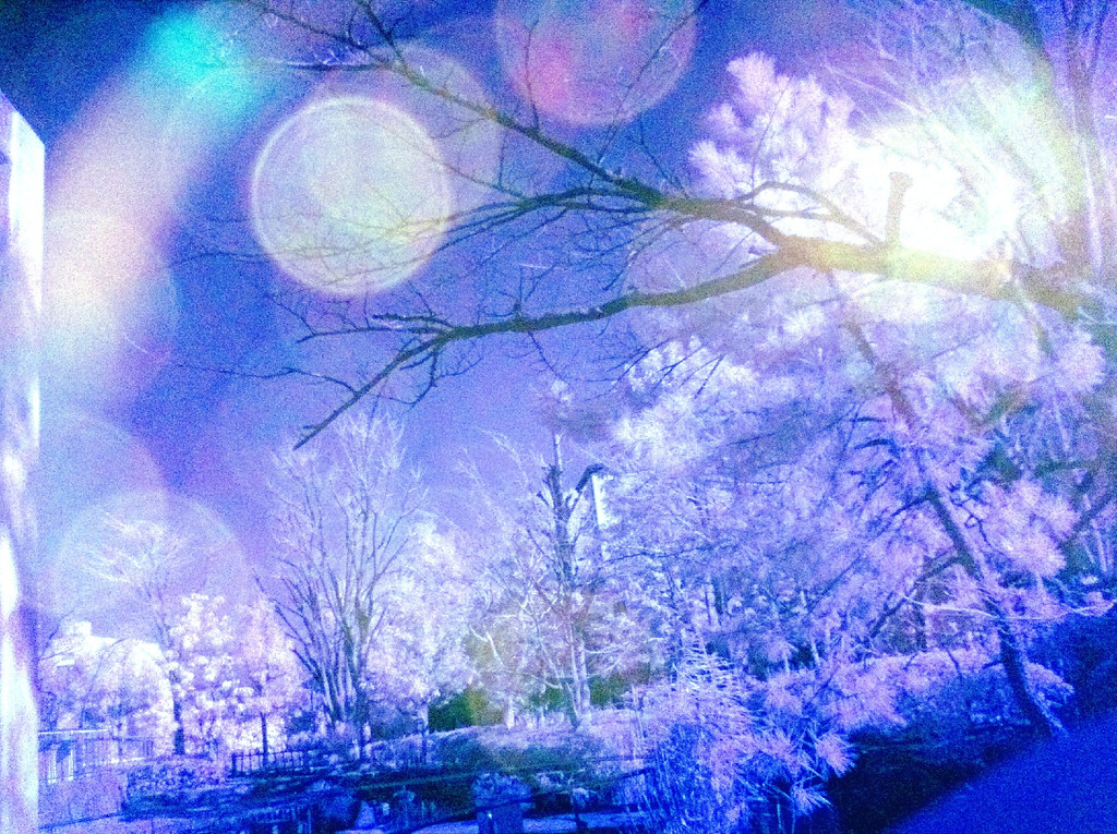 iPhone infrared #4