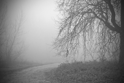 Il mistero del dietro... la curva.. by Claudio61 una foto ferma un ricordo nel tempo