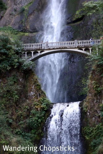 11 Chasing Waterfalls - Columbia River Gorge - Oregon 7