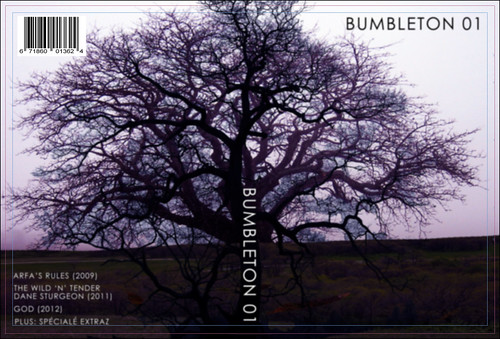 BUMBLETON_DVD 2-spine