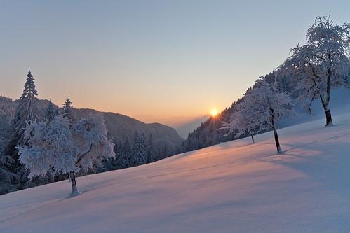 winter sunset vorarlberg götzis millrütte zeissdistagont2821