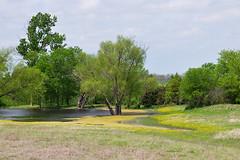 Ennis - Yellow Creek