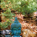 BUDDAH HEAD AND COPPER ROCKS
