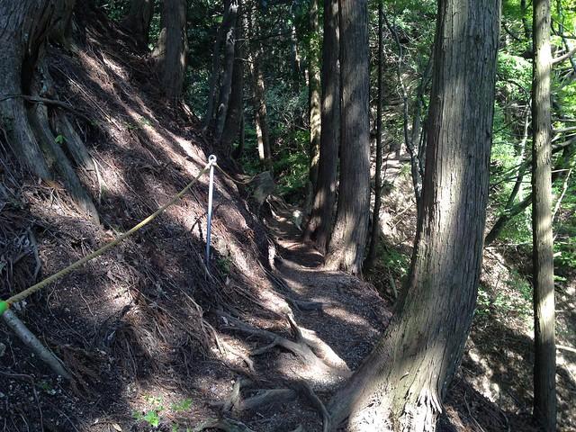 錫杖ヶ岳 加太コース ロープ場
