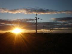 """""""El Cerro"""" windfarm"""