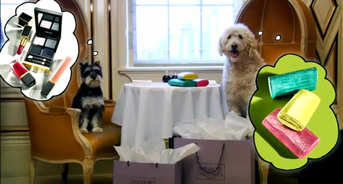 2011_11_bergdorf-goodman-dog-video