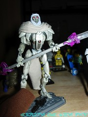 Magnaguard