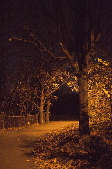nightpath2