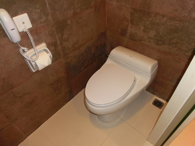 Toilet - The deluxe room of the 16th floor / Hotel Novotel Nha Trang