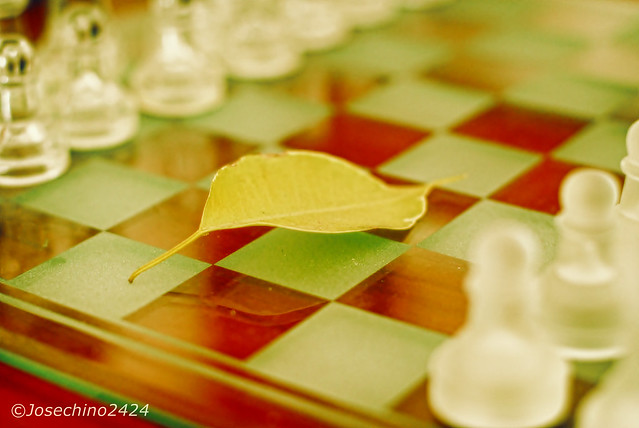 Partida en otoño