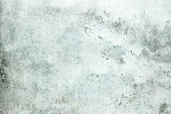 Free Texture #359