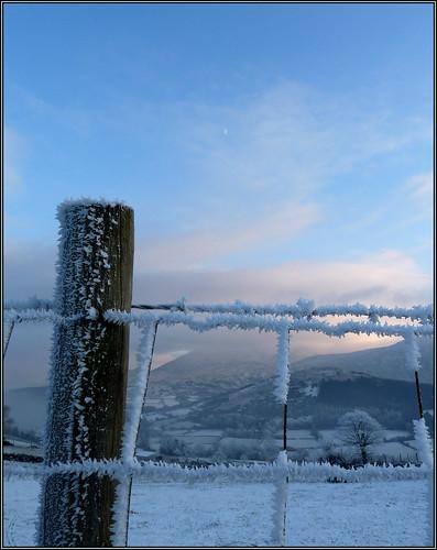 Winter's Grip: hoar frost