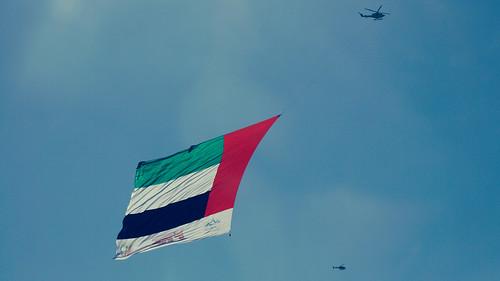 SAE flag