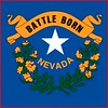 Nevada flag detail