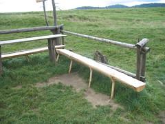 Polish bench