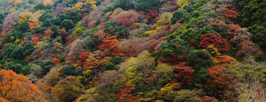 Osaka Minoh (Stiched and cropped)