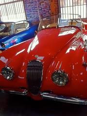 automobile, automotive exterior, jaguar xk120, vehicle, automotive design, antique car, vintage car, land vehicle, luxury vehicle, convertible,