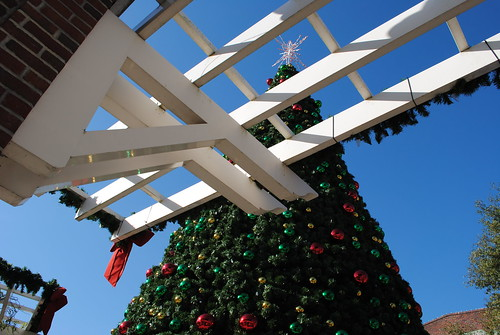 Winter Garden FL Christmas Tree