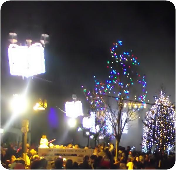 xmas lights 017
