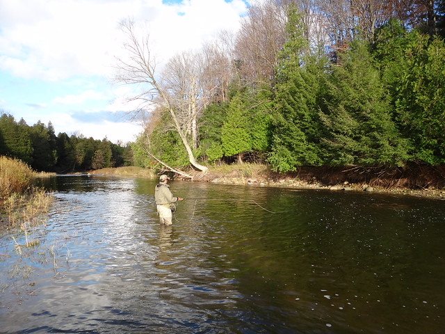Fly fishing the Bighead River.