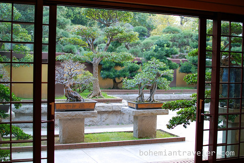 Nan Lian Gardens Bonsai trees