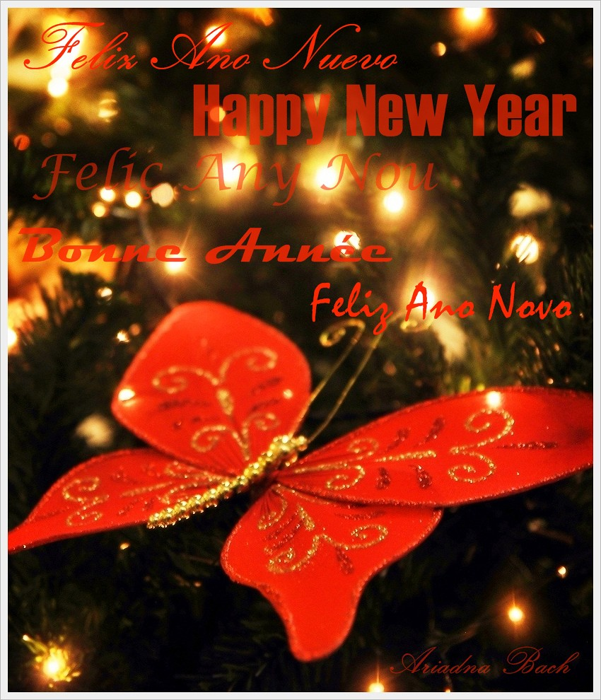 bom natal 2011 x